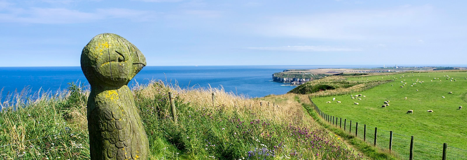 Guided walks Yorkshire and Whitby from the Raithwaite Estate
